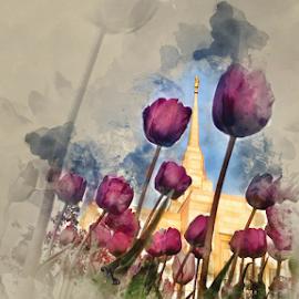 Ogden UT LDS Temple with Tulips Watercolor by Valerie Aebischer - Digital Art Places ( ogden ut temple, mormon temples, mormon temple, lds temple, lds, mormon, lds temples )