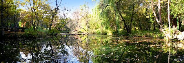 Photo: Купальна в джерельних водах. Бережанський дендропарк в с.Рай