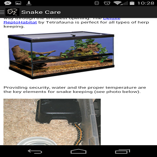 SNAKE CARE 101- screenshot