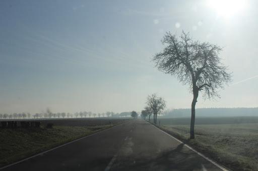Zum Öffnen einer Fotostrecke mit Wetterbildern vom Morgen des 26.03.2017 auf das Bild klicken - alle Bilder A.M.