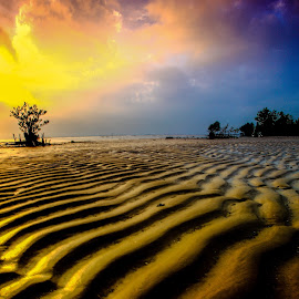 Line of Sand by Andi Appa - Nature Up Close Sand