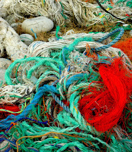 Photo: Pieces of ropes and nets.. A large part of the littering here is fishery related.