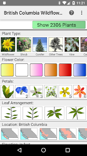 BC Wildflowers- screenshot thumbnail