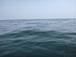 Photo: 終日ベタベタなぎ。潮は終日、動きませんでした。