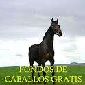 Imagenes de Caballos Gratis icon