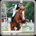 Horse Jump Show icon
