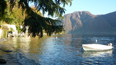 Photo: The lake in November (15.11.08)