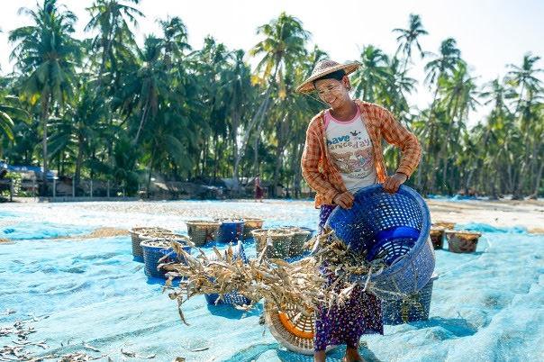 Jade Taw Fishing Village