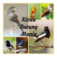 Download Masteran Burung Anis Kembang Gacor Mp3 Free For Android Masteran Burung Anis Kembang Gacor Mp3 Apk Download Steprimo Com