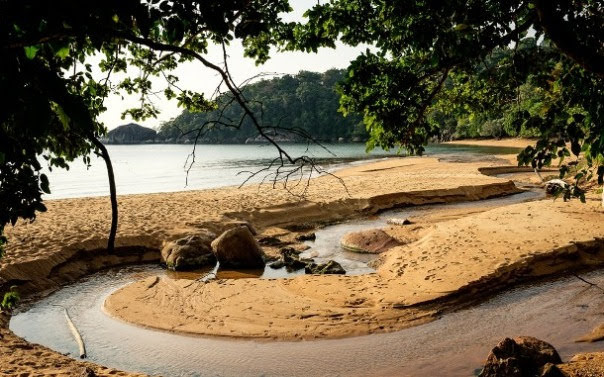 Monkey Beach, Tionam