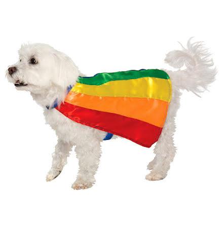 Hunddräkt, mantel regnbåge S