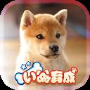 幸せの柴犬育成ゲーム3D