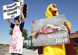 Photo: MCDONALDS PROTEST2  (07-17-09)  David Robertson and his sister Julia join in a PETA protest outside McDonald's  as protest the chickens slaughter method.  Glenn Moore/Tracy Press