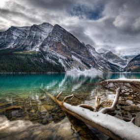 Lake Louise by Don Guindon - Landscapes Mountains & Hills ( lake louise, glacier, mountains, hdr, snow, trees, lake, rocks )