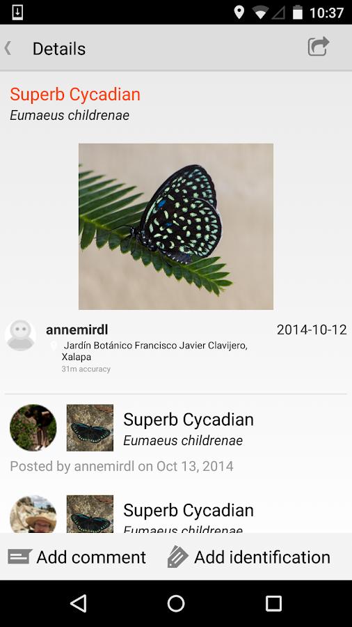 iNaturalist- screenshot