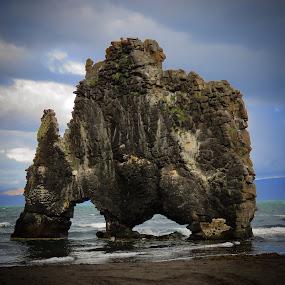 Hvítserkur  by Bjarklind Þór - Landscapes Travel
