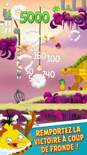 Angry Birds Classic  captures d'u00e9cran 2