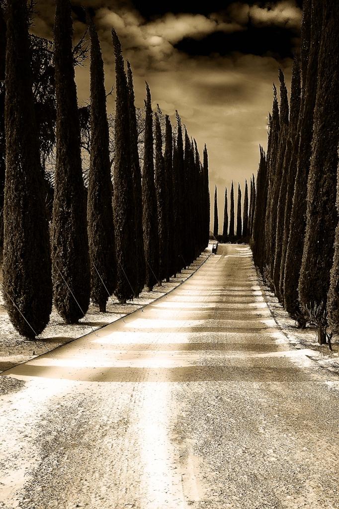 Viale....del tramonto di Marco Giovannini