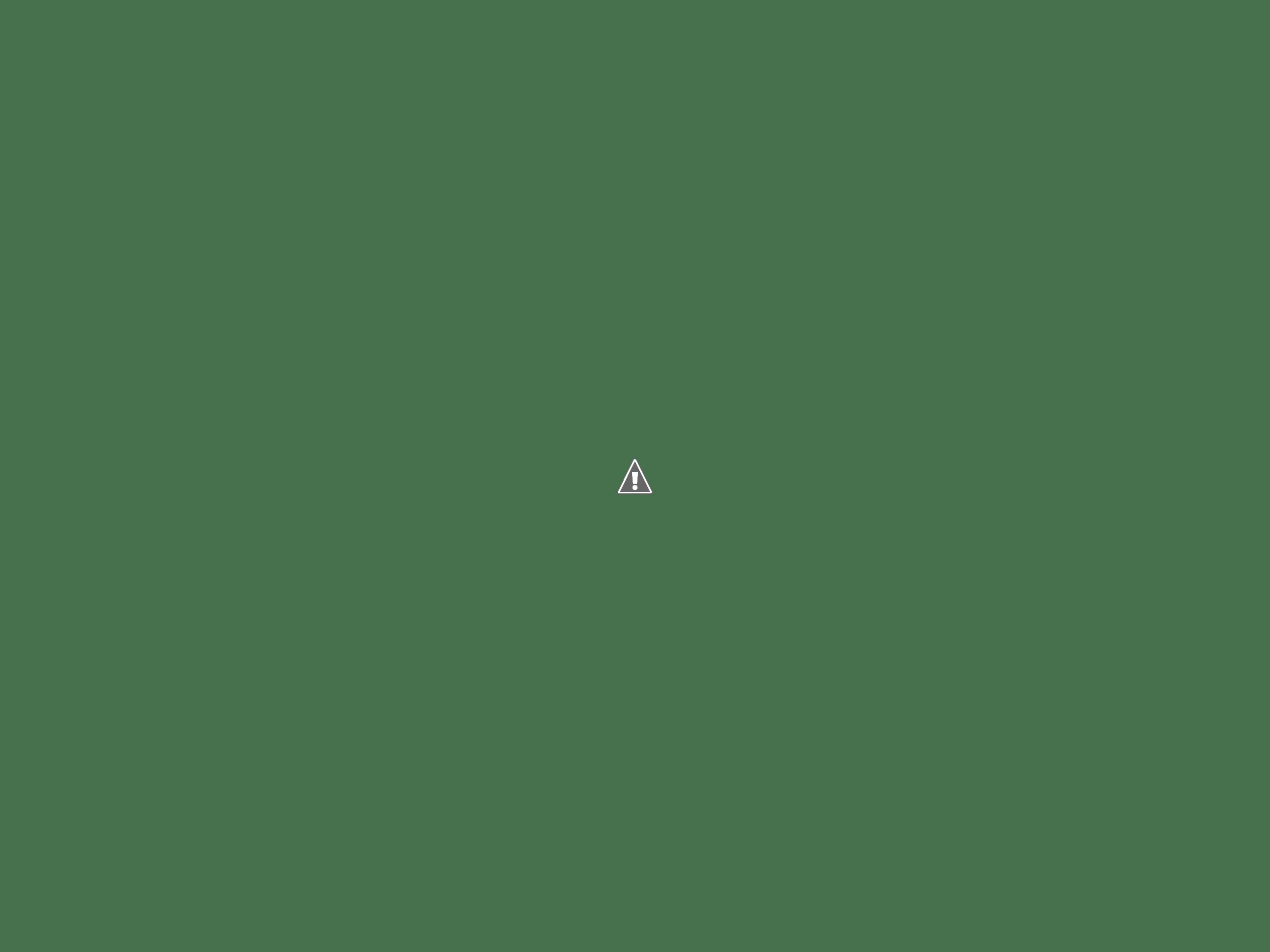写真: 登天の松と杓子の芝