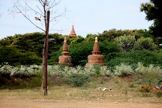 Photo: Year 2 Day 57 -  Hotel Grounds and View of Temples #4