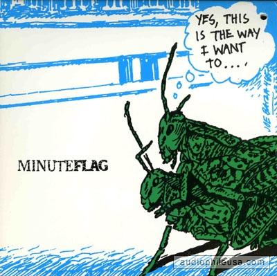 mike watt minuteflag.jpg