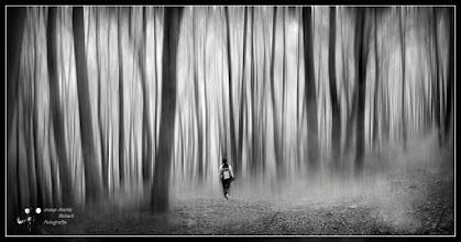 Photo: Walking in Woods My contribution to: #MistyMonday Curator : +Martin Rak  #MonochromeMonday Curator : +Siddharth Pandit  #MoodyMonday Curated : +Philip Daly  #MysteryMonday Curated +Jenna Lynn Monroe  #art #fineart #CritiquePls #PlusPhotoExtract curator +Jarek Klimek #FineArtPls