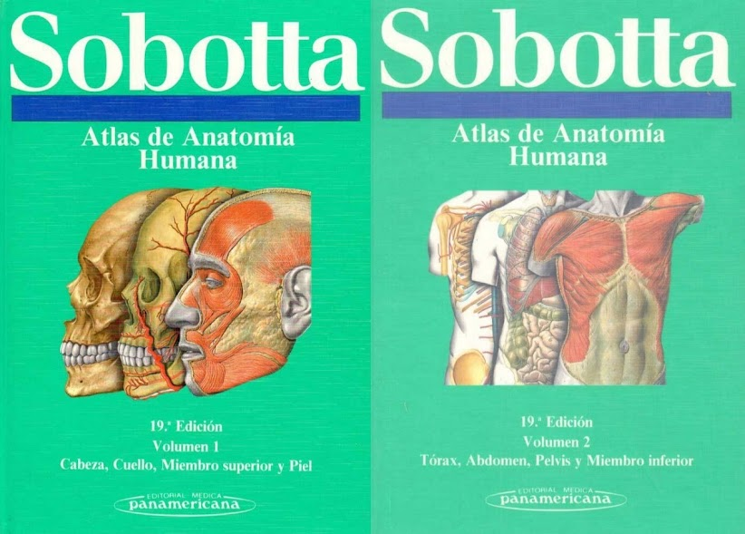 Atlas de Anatomía Humana Sobotta - 2 Volúmenes - 19 Edición ...