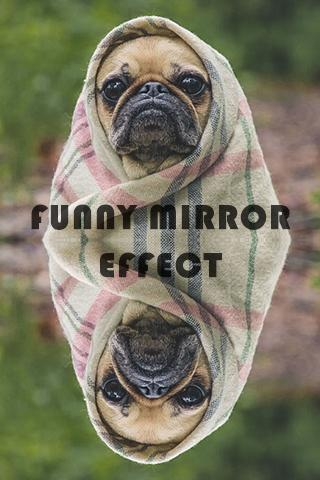 Funny Mirror Effect