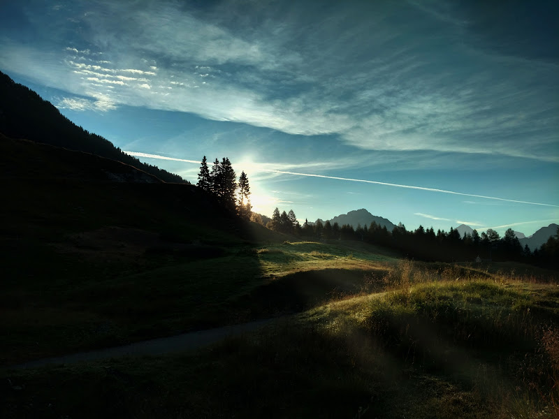 Sentiero mattutino di ZenithFox