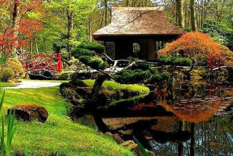 Japanese Garden Designs find this pin and more on beautiful gardens rock garden ideas for japanese design Japanese Garden Design Ideas Screenshot