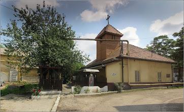 Photo: Măr (Malus) - de pe Str. Andrei Muresanu, capela spitalului - 2017.08.08