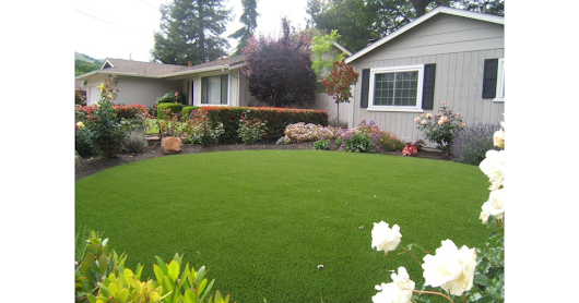 Want a Worry-Free Garden? Here's Why Artificial Turf in Your Home Is a Wise Choice - Google Drive