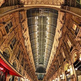 Galleria Vittorio Emanuele by Luca Libralato - Buildings & Architecture Public & Historical ( milan, gallery, galleria vittorio emanuele, piazza duomo, milano )
