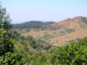 Photo: Bvumba Mountains