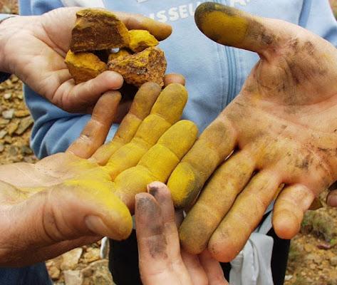 Le mani sulla terra.. di marulisa