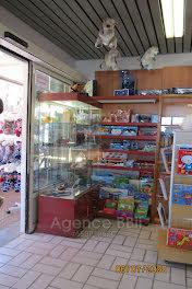 locaux professionels à Allos (04)