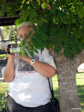 Photo: Mary Lou Pasley taking videos    SWLS at HALS 2009-1107