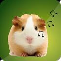 Guinea Pig Sounds icon