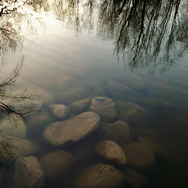 by Corali Reciful - Nature Up Close Water (  )