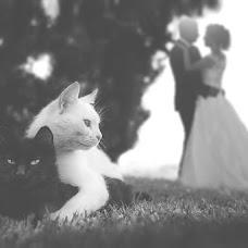 Wedding photographer Alessandro Gauci (gauci). Photo of 17.06.2015