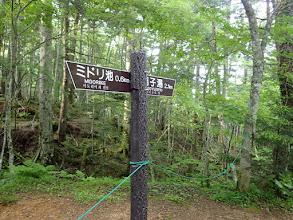 軌道跡から右の登山道へ