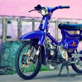 honda c70 by Pak'de Blangkon - Transportation Motorcycles
