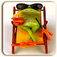 Funny Wallpapers Download on Windows