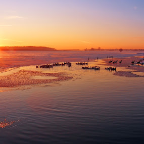 sunset 1 by Victor Pavel - Landscapes Waterscapes ( .... )