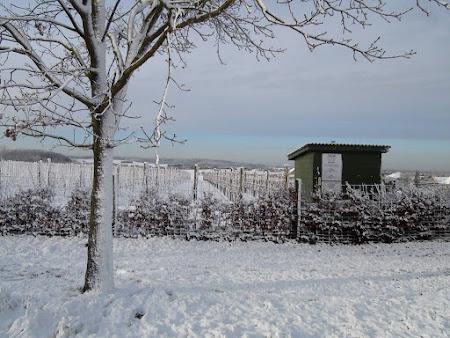 Wintersfeer met sneeuw èn dikke rijp bij -25°C!