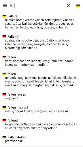 English Hungarian Dictionary  screenshot 2