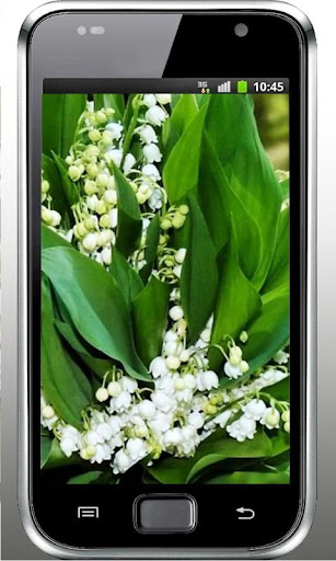 Lily of Valley Forest HD LWP