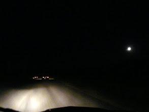 Photo: la meute en chasse sous la pleine lune