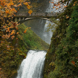 by Kevin Young - Uncategorized All Uncategorized ( fall, waterfall )