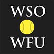 Winston-Salem Open icon
